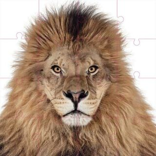 Zuckerman_creatures_puzzle_lion