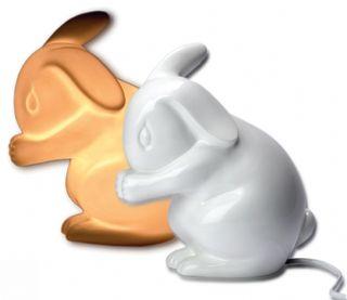 White_rabbir_england_bunny_light