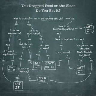Food_on_the_floor