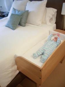 Baby_bunk_co_sleeper