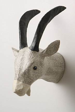 Anthropologie_gazelle