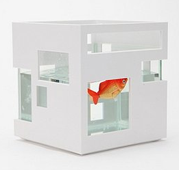 Modern_fish_bowl